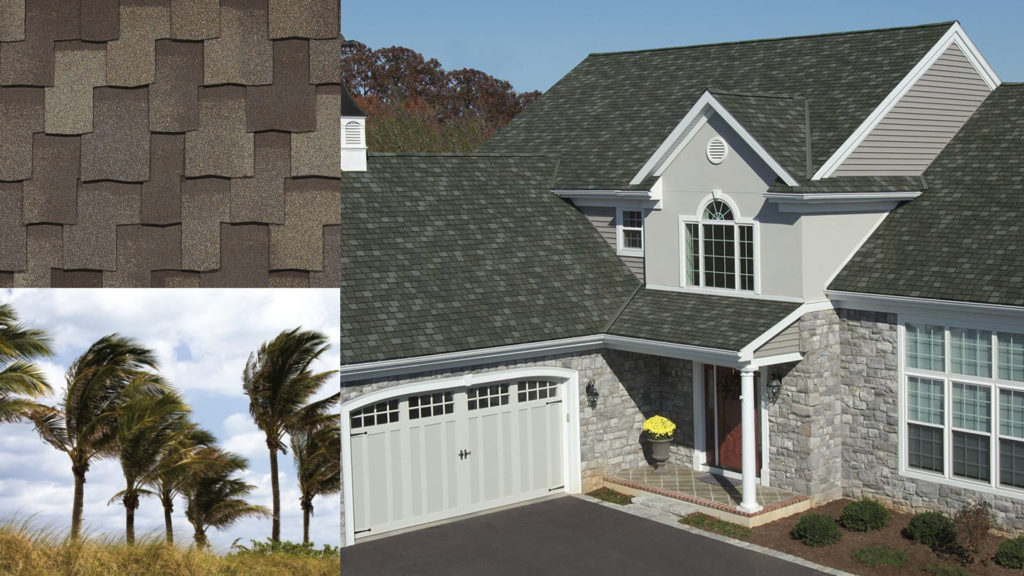 montage of a house, shingles, and palm trees
