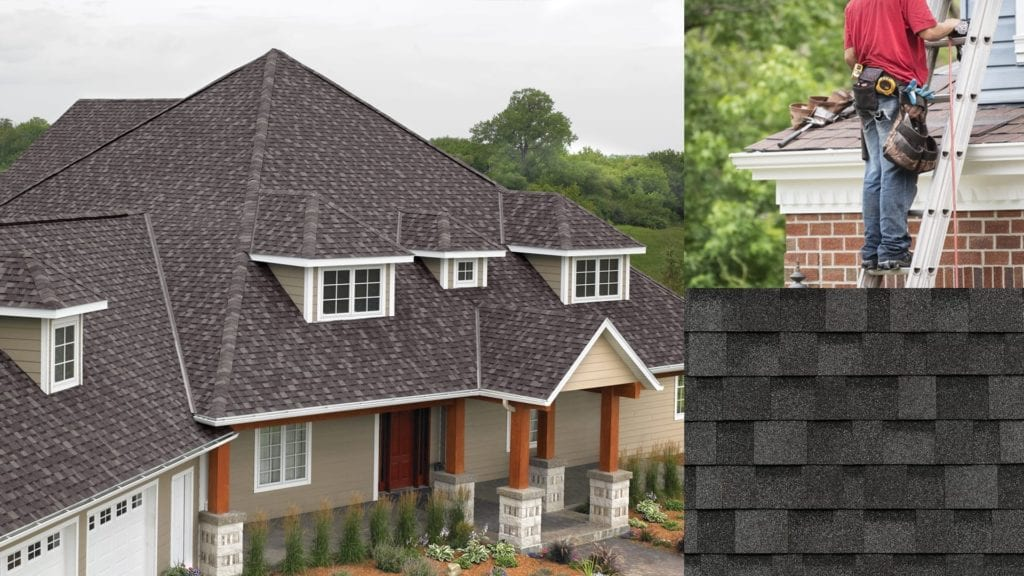 grey shingle roof, shingle swatch, roofer on top of roof next to ladder