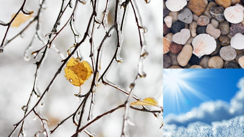 montage of shells, rocks, sky, and ice-covered twigs