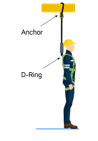 roofer with safety harness showing D-ring and anchor